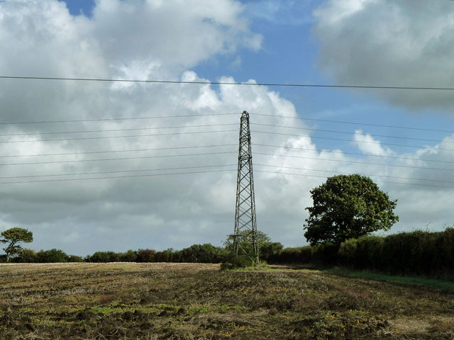 Pylon and tree