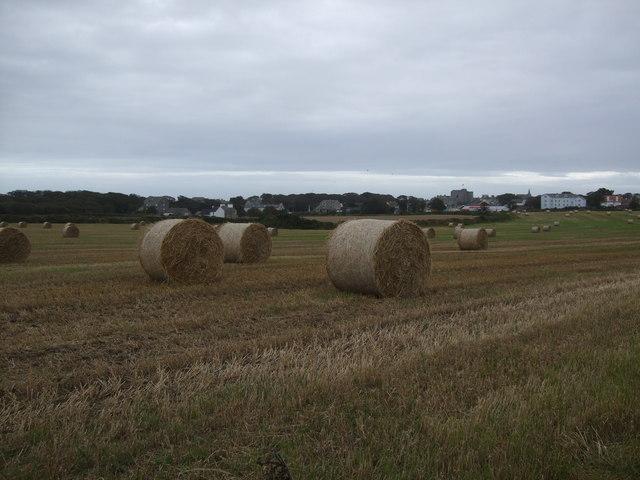 Straw bales in Castletown