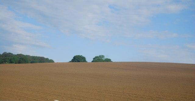 Farmland, Sharpenhurst Farm