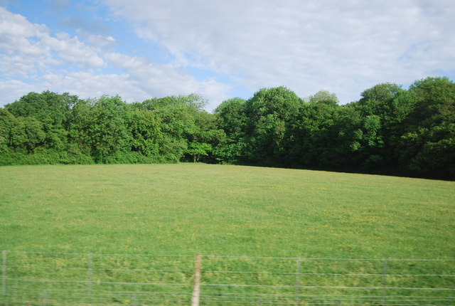 Field by the Arun Valley Line