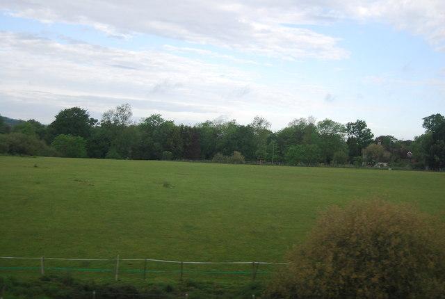 Grassy field , Todhurst Farm