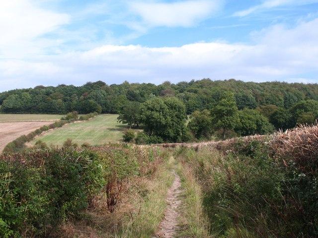 Footpath at Wentworth