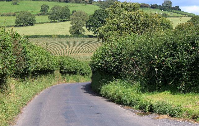 2011 : Westcombe Road looking east