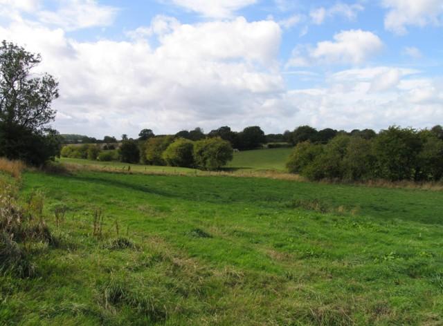 Towards Waltham New Covert