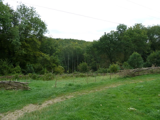 COAM 111: looking eastwards from the Iron Age Farm