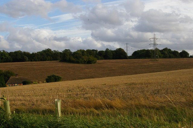 After the harvest: looking south-east off the London Loop