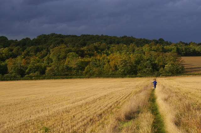 After the harvest: heading north off the London Loop