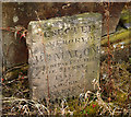 J3872 : Gravestone, Knock Burial Ground by Rossographer