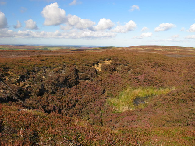 Disused quarry on Allenshields and Buckshott Moor