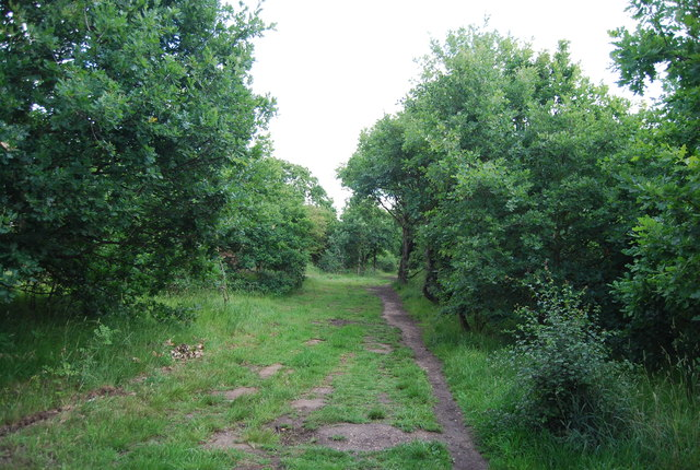 Footpath in Hornchurch Country Park