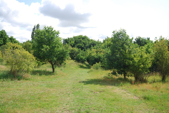 Footpath, Hornchurch Country Park