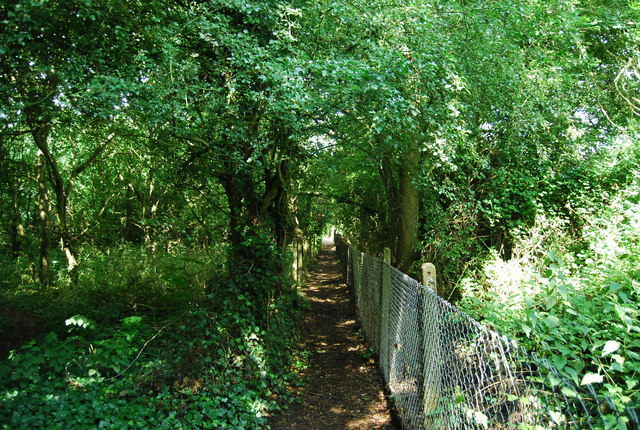 Footpath by St George's Hospital