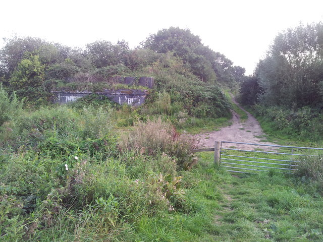 Dismantled rail line across Beccles Marshes