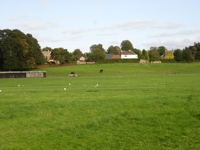Horse pasture land at Highcross