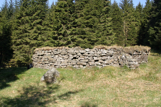 Sheepfold north of the Gair Burn