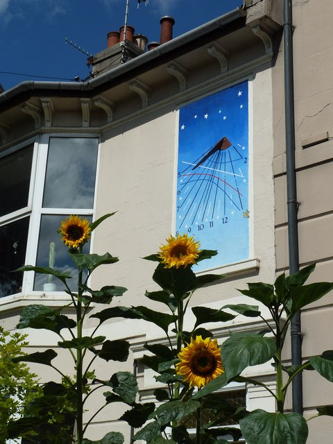 Sunflowers and a sundial on the Upper Lewes Road