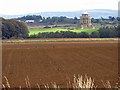 SE7169 : Crop harvested, Castle Howard Estate by Pauline Eccles