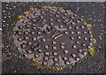 J2763 : &quot;SW&quot; manhole cover, Lisburn by Albert Bridge