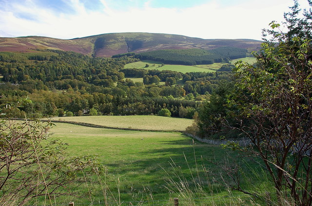 The Tweed Valley at Dawyck