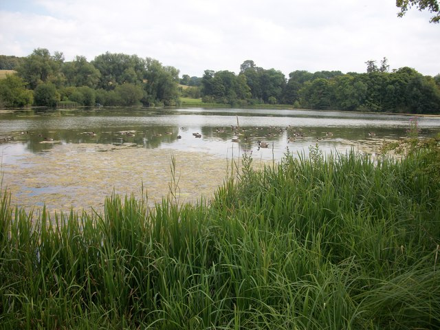 Shardeloes Lake