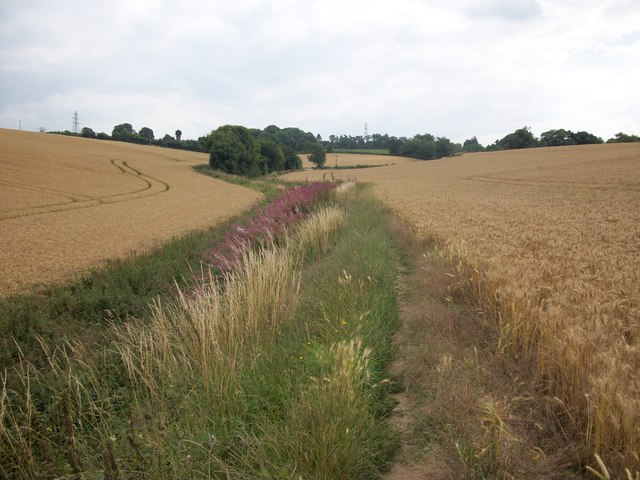 Footpath to Coleshill