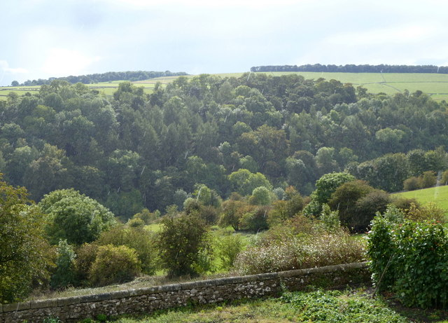 View across Lathkill Dale