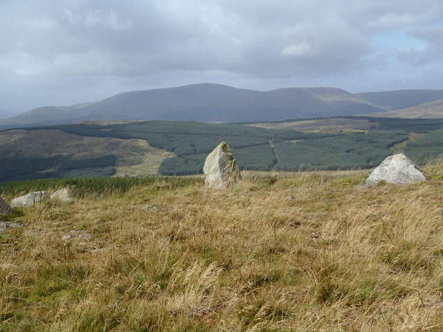 The Carsphairn Hills from Mid Hill