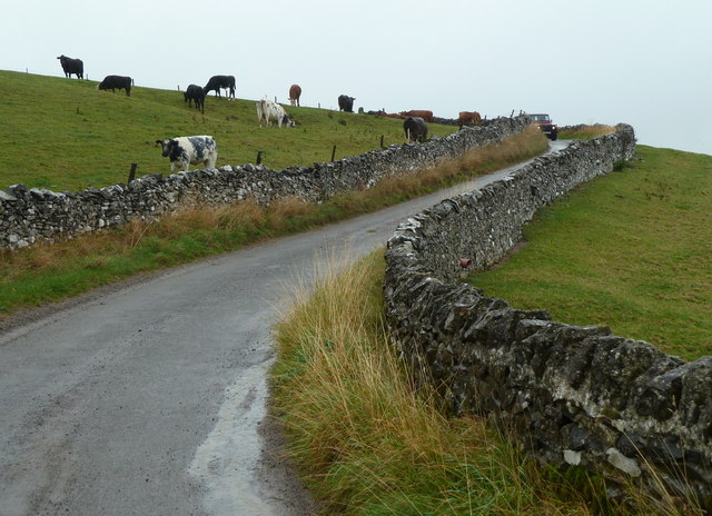 Lane and steep fields near Dirtlow Farm