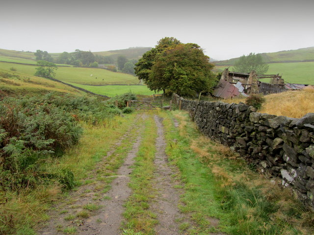 Track descending towards Callow