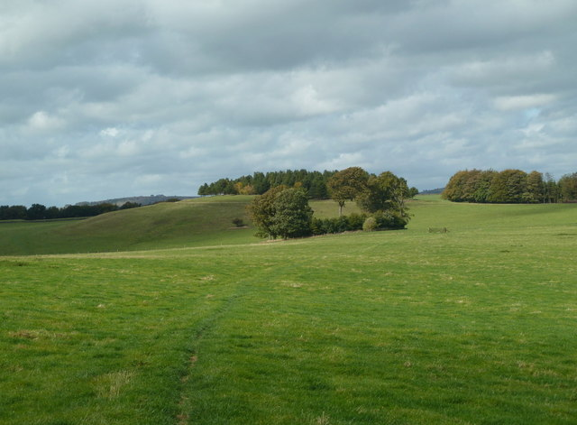 Path across Calton Pastures