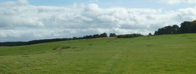 Open grassland, Calton Pastures