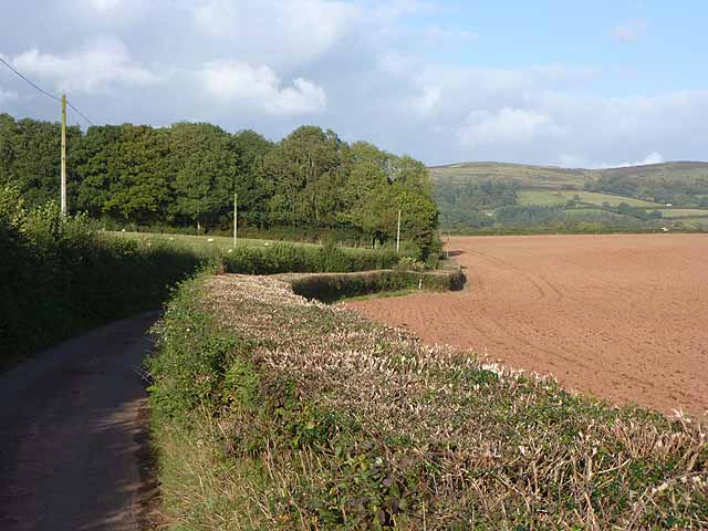 Lane and ploughed field near Roebuck Gate Farm