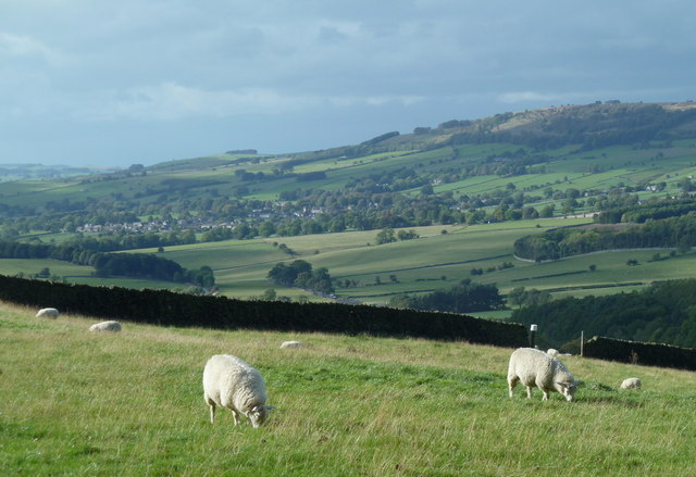 Upland field and view towards Great Longstone