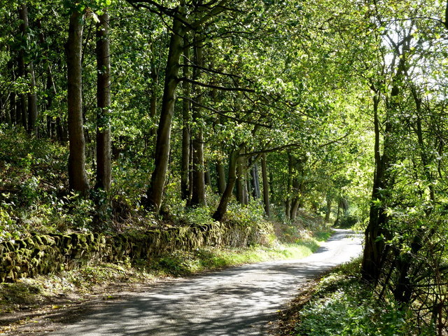 Lane to Bakewell