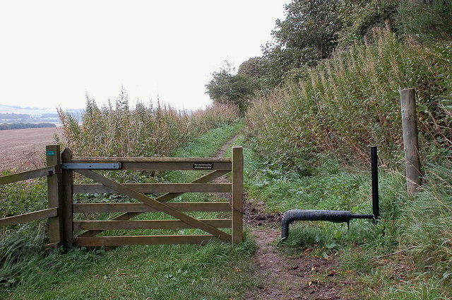 Horse stile, Mount Ulston