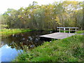 NH6089 : &quot;Former curling pond&quot; in Gearrchoillie Community Wood by sylvia duckworth