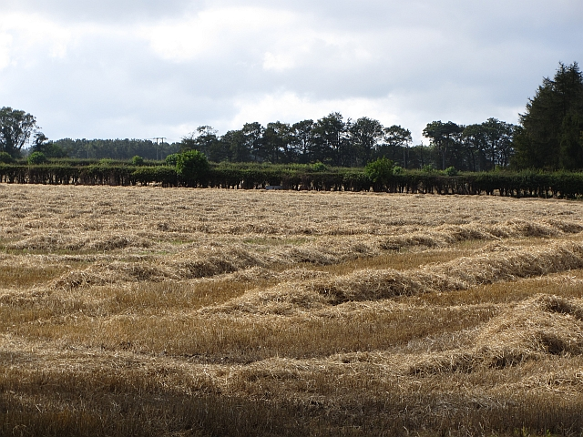 Straw and stubble above Roslin Glen