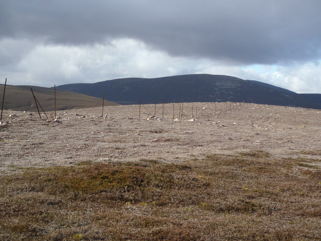 Old Boundary Fence west of Cock Cairn