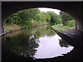 SJ5680 : The Bridgewater Canal from beneath Preston Brook Bridge, Cheshire by Roger  Kidd