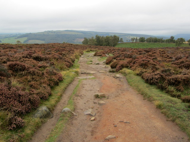 Footpath on Curbar Edge