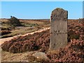 SK2882 : Old Milestone on Houndkirk Road by Neil Theasby