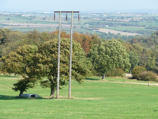 Telegraph pole on the northern side of Pool Hill