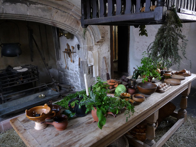 The Kitchen, Plas Mawr