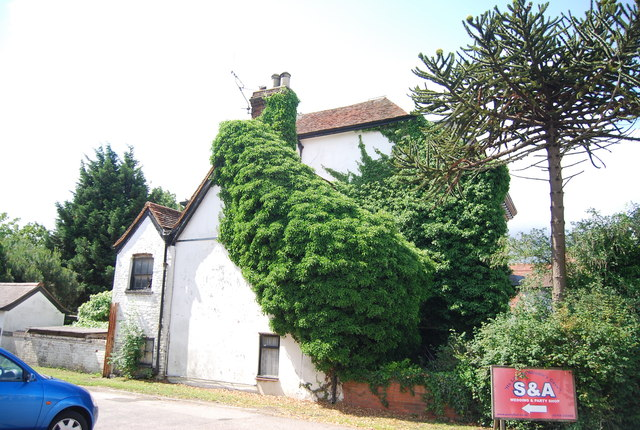 Well vegetated cottage, Ockendon Rd