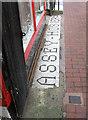 TQ3104 : 5 Gardner Street Mosaic by Simon Carey