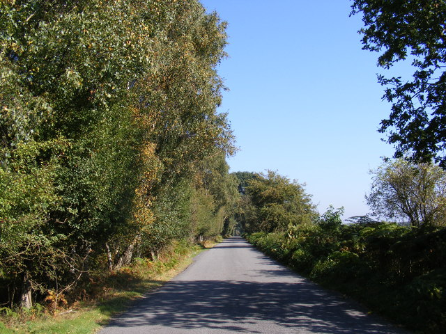 Road to Butley & Boyton