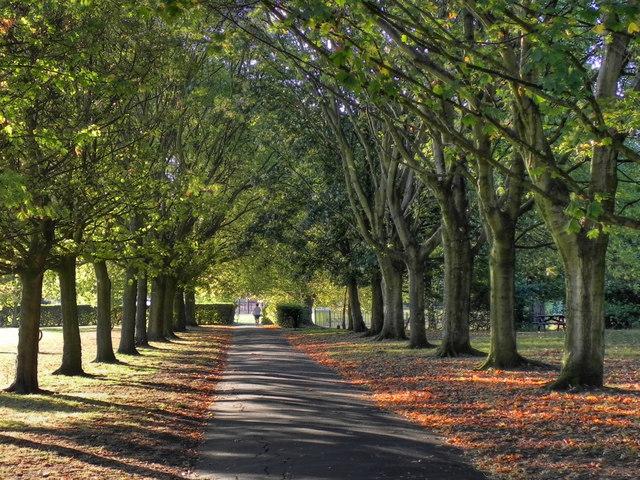 Ladybarn Park