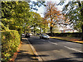 SJ8687 : Cheadle Road (A5149) by David Dixon