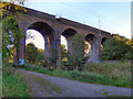 SJ8787 : Railway Viaduct, Lady Bridge by David Dixon
