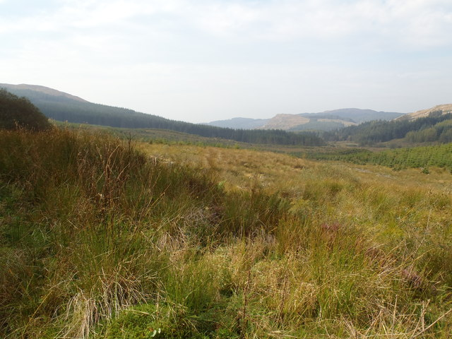 Across Knockmain to Craigdews Hill